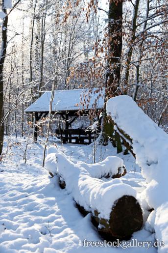 Winter Im Wald Bilder Zum Gratis Download Freestockgallery
